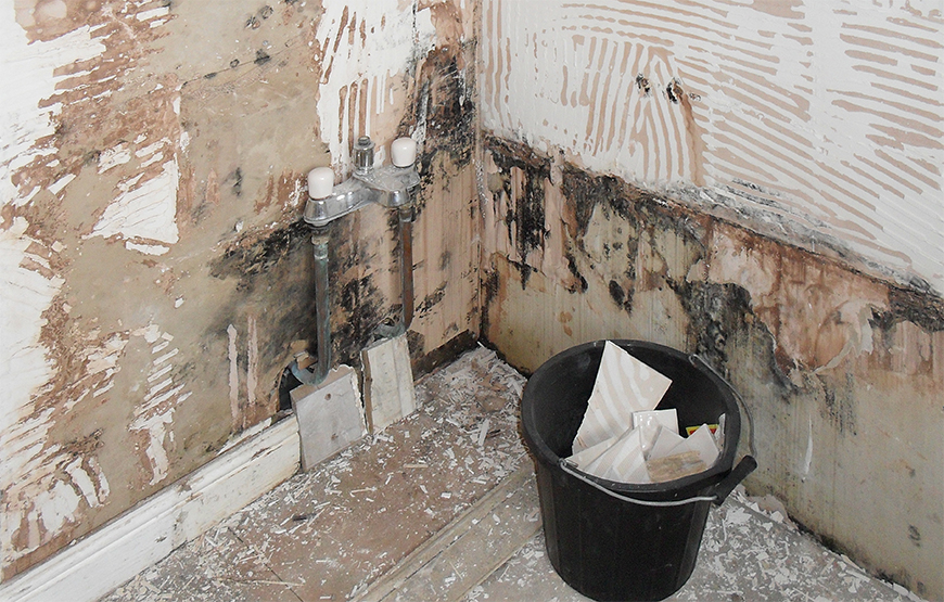 How to protect water-sensitive substrates: plaster, plasterboard, plywood before tiling?