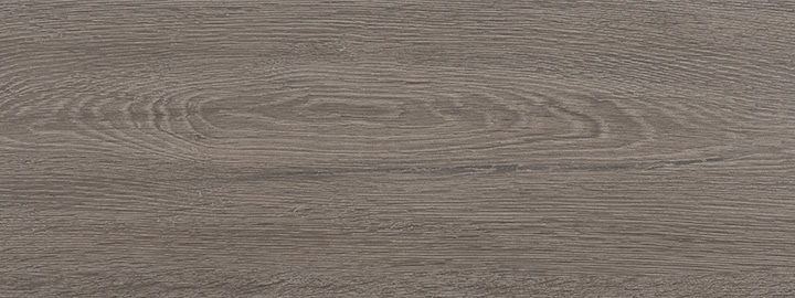Hudson Ceniza 22.5x60. Waterproof wood look floor tile for bathrooms and kitchens.